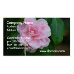 Camelia rosado bonito plantilla de tarjeta de negocio