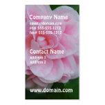 Camelia rosado bonito tarjeta de negocio