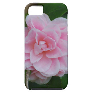 Camelia rosado floreciente funda para iPhone SE/5/5s