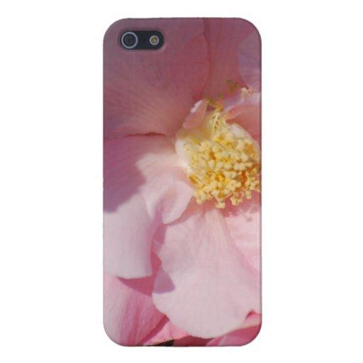 Camelia rosado iPhone 5 carcasas