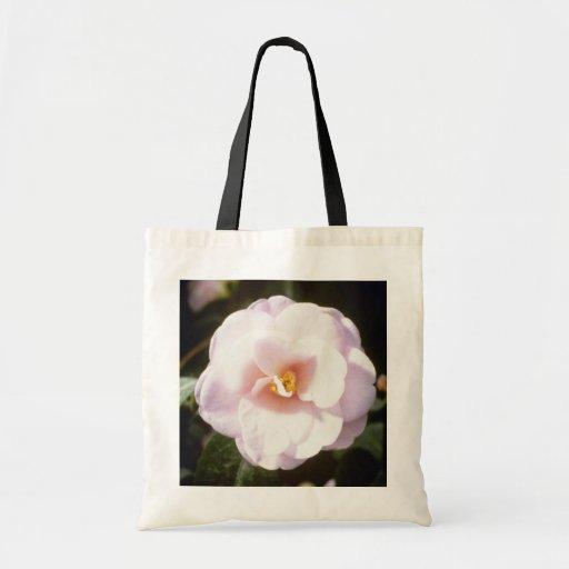 """Camelia rosado Japonica """"Fleur De Pecher"""" (japonés Bolsa Lienzo"""