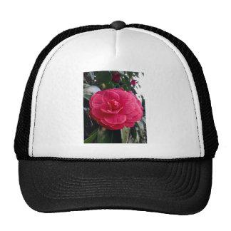 Camelia Trucker Hat