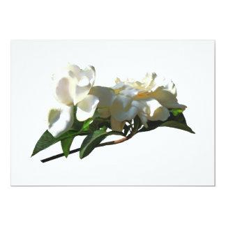 """Camelias blancas en sol invitación 5"""" x 7"""""""