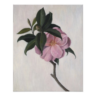 Camellia 1998 poster