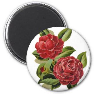 Camellia #1 magnet