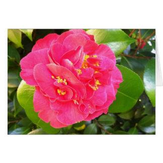 Camellia Bloom Card