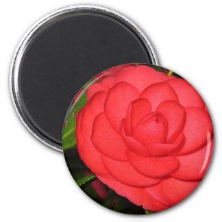 Camellia Bloom Magnet