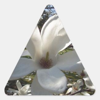 Camellia Blosson Triangle Sticker