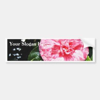 Camellia Car Bumper Sticker