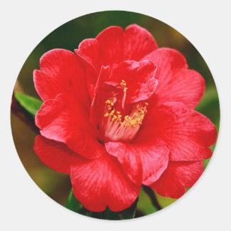Camellia Classic Round Sticker