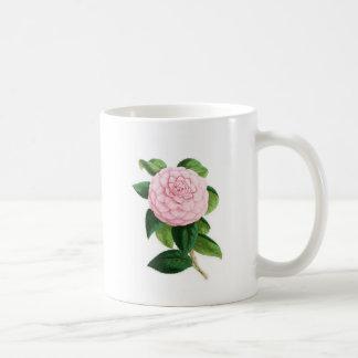 Camellia, Duchesse De Nassau Coffee Mug