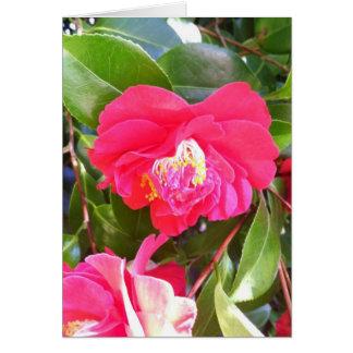 Camellia Flower Heart Card