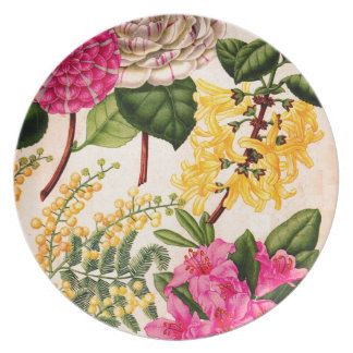 camellia, forsythis, rhododendron and acacia dinner plate