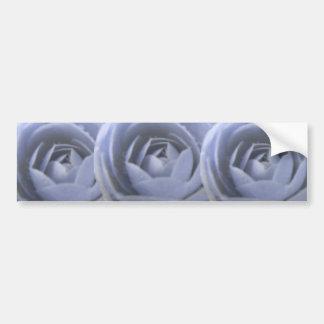 Camellia Frozen Beauty Bumper Sticker Car Bumper Sticker