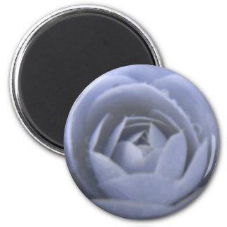 Camellia Frozen Beauty Magnet
