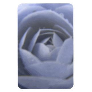 Camellia Frozen Beauty Premium Magnet
