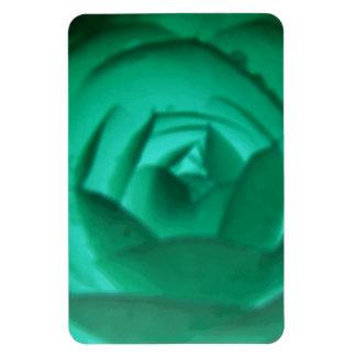 Camellia Hypnotic Premium Magnet
