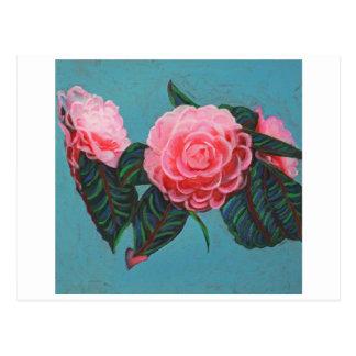 Camellia Japonica Sky Postcard