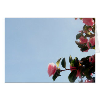 Camellia Pink Flower Blue Sky Card