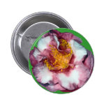 Camellia Pink Gift Buttons