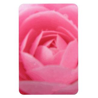 Camellia Pink Premium Magnet