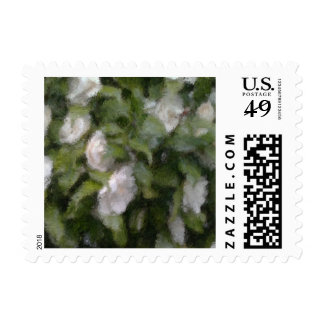 Camellia Postage Stamp