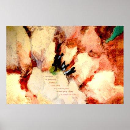 Camellia Prose (Fine Art Poster)