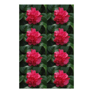 Camellia Rosy Red Ruffled Stationery