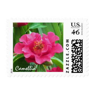 Camellia Stamp stamp