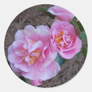 Camellia Sticker