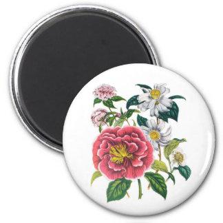 Camellias 2 Inch Round Magnet