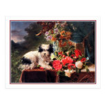 Camellias and a Terrier Postcards