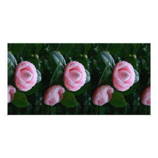Camellias Card