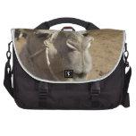 Camello Achmed Bolsas Para Portatil