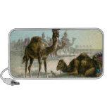 Camello árabe PC altavoces