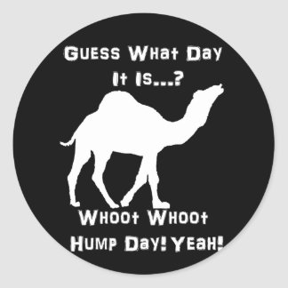 Camello blanco del día de chepa pegatina redonda