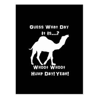 Camello blanco del día de chepa tarjetas postales