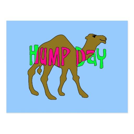 Camello con día de chepa en rosa y verde tarjetas postales
