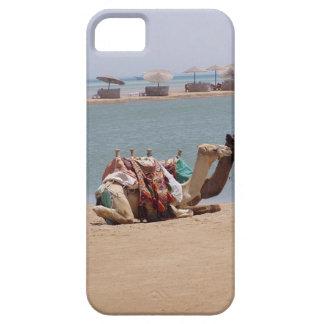 Camello con la silla de montar colorida funda para iPhone 5 barely there