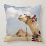Camello con las pirámides Giza, Egipto Almohada