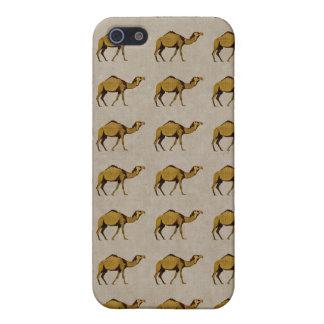 Camello de bronce Pern i del vintage iPhone 5 Protectores