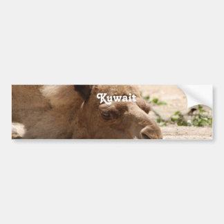 Camello de Kuwait Pegatina De Parachoque