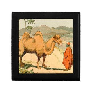 Camello de la Doble-Chepa en el desierto mongol Joyero Cuadrado Pequeño