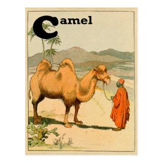Camello de la Doble-Chepa en el desierto mongol Tarjetas Postales
