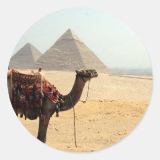 camello de la pirámide etiqueta redonda