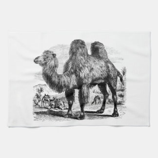 Camello de los 1800s del vintage - plantilla egipc toallas