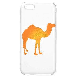 Camello de Sun