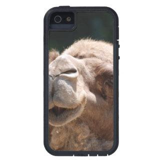 Camello del día de chepa iPhone 5 carcasa