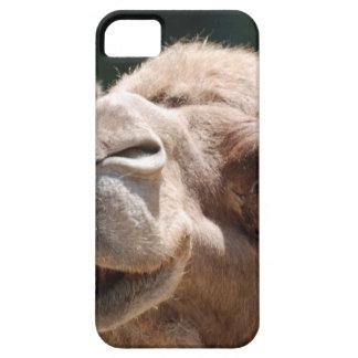 Camello del día de chepa iPhone 5 funda