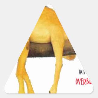 Camello del día de chepa. Marchito Pegatina Triangular